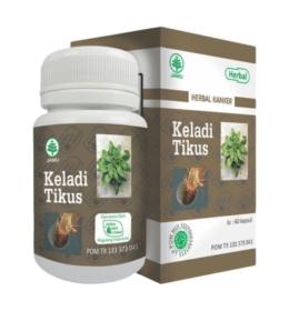 keladi tikus | Herbal Indo | herbalassunnah