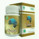 gamat gold-herbal indo utama-herbalassunnah